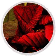 Round Beach Towel featuring the photograph Crimson Hibiscus by Nadalyn Larsen