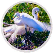 Criss-cross Egrets Round Beach Towel by Susan Molnar
