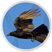 Round Beach Towel featuring the photograph Crow In Flight by Meg Rousher