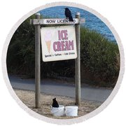 Round Beach Towel featuring the photograph Crow In The Bucket by Cheryl Hoyle