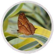 Cruiser Butterfly Round Beach Towel