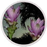 Round Beach Towel featuring the photograph Curcuma Hybrid Flowers by Greg Allore