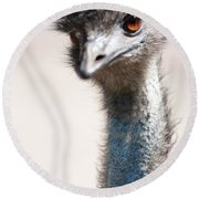Curious Emu Round Beach Towel