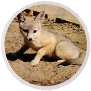Curious Kit Fox Round Beach Towel