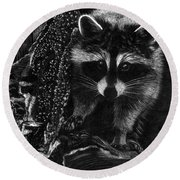 Curious Raccoon Round Beach Towel