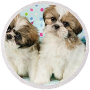 Curious Twins Round Beach Towel
