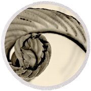 Curled Round Beach Towel