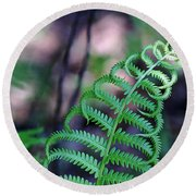 Round Beach Towel featuring the photograph Curls by Debbie Oppermann
