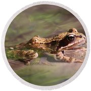 Cute Litte Creek Frog Round Beach Towel