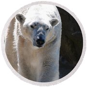 Cute Polar Bear  Round Beach Towel by DejaVu Designs