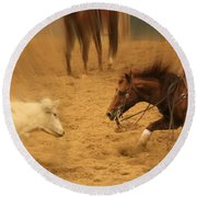 Cutting Horse 8 Round Beach Towel