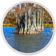 Cypress Birdhouse  Round Beach Towel