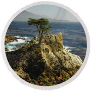 Cypress Round Beach Towel by Donna Blackhall