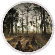 Cypress Stumps And Sunset Fire Round Beach Towel