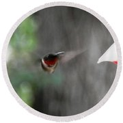 Daddy Humming Bird Round Beach Towel by Belinda Lee