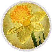 Round Beach Towel featuring the photograph Daffodil by Ann Lauwers