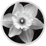 Daffodils - Infrared 01 Round Beach Towel by Pamela Critchlow