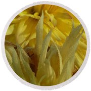 Dahlia Dew Yellow Round Beach Towel by Susan Garren