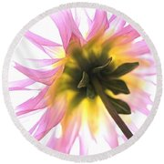 Round Beach Towel featuring the photograph Dahlia Flower by Joy Watson