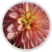 Dahlia October Round Beach Towel by Susan Garren