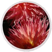 Dahlia Vi Round Beach Towel by Christiane Hellner-OBrien