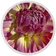 Dahlia Vii Round Beach Towel by Christiane Hellner-OBrien
