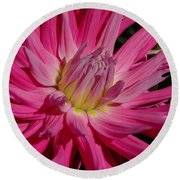 Dahlia X Round Beach Towel by Christiane Hellner-OBrien