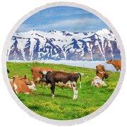 Dairy Cows Grazing On Farmland Round Beach Towel