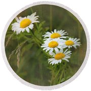 Daisies Round Beach Towel by Lena Auxier