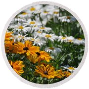 Round Beach Towel featuring the photograph Daisy Fields by Bianca Nadeau