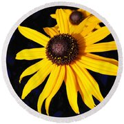 Daisy On Dark Blue Round Beach Towel