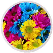 Round Beach Towel featuring the photograph Daisys Flowers Bloom Colorful Petals Nature by Paul Fearn