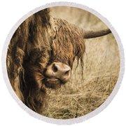 Highland Cow Damn Fleas Round Beach Towel