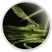 Damsel Dragon Fly  With Sparkling Reflection Round Beach Towel