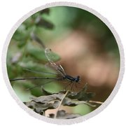 Round Beach Towel featuring the photograph Damselfly by Neal Eslinger