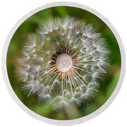 Round Beach Towel featuring the photograph Dandelion by Carsten Reisinger