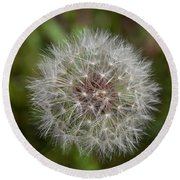 Dandelion Clock Round Beach Towel