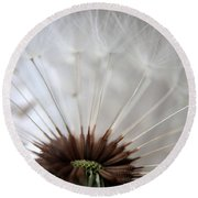 Dandelion Cross Section Round Beach Towel by Kenny Glotfelty