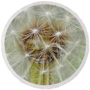 Dandelion Matrix Round Beach Towel