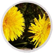 Round Beach Towel featuring the photograph Dandelion Weeds? by Martin Howard