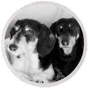 Dapper Doxies Round Beach Towel by Erika Weber