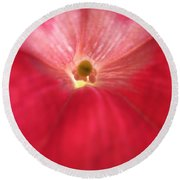 Red Petunia Center 1 Round Beach Towel by Barbara Yearty
