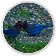 Darling I Have To Tell You A Secret-sweet Stellar Jay Couple Round Beach Towel