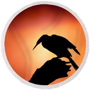 Darter Silhouette With Misty Sunrise Round Beach Towel