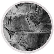 Date Palm Bark Round Beach Towel