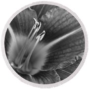 Day Lily In Black And White Round Beach Towel by Jeanette C Landstrom