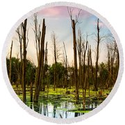 Daylight In The Swamp Round Beach Towel