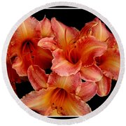 Round Beach Towel featuring the photograph Daylilies 1 by Rose Santuci-Sofranko