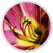Round Beach Towel featuring the photograph Daylilly Dusted With Pollen by Jennifer Muller