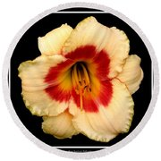 Round Beach Towel featuring the photograph Daylily 3 by Rose Santuci-Sofranko